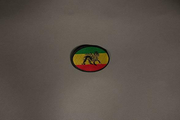 #22 Lion oval
